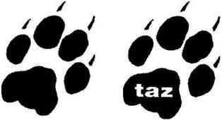 """""""taz"""""""